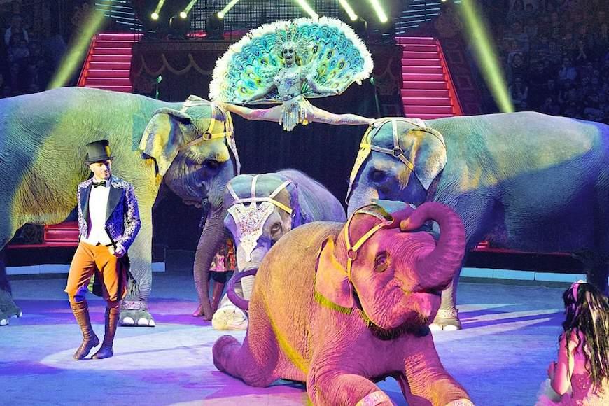 Kako je nastao cirkus