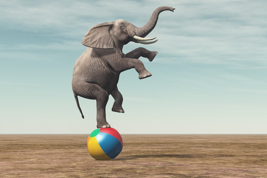 Zašto slonovi imaju velike uši