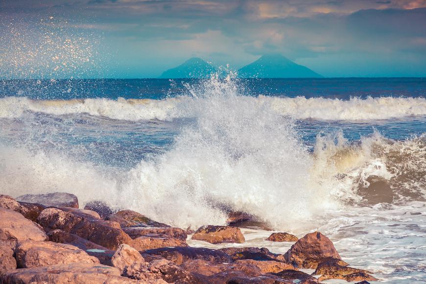 Životinje oko nas: Jadransko more (peti dio)