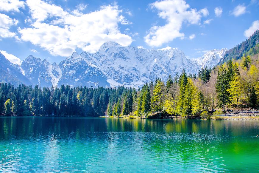 Životinje oko nas – jezero