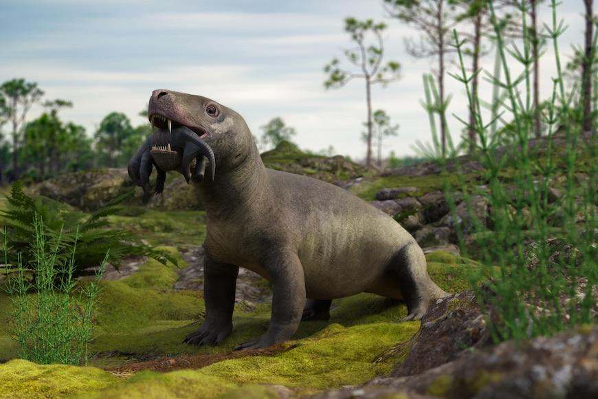 Kako su živjeli prvi sisavci