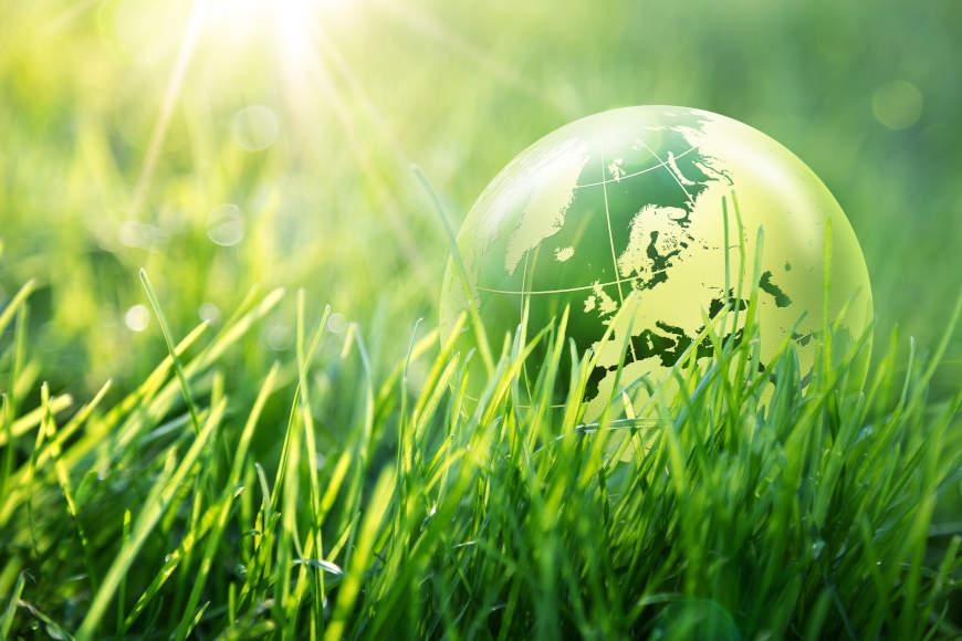 Svjetski dan zaštite okoliša u Industrijsko-obrtničkoj školi Virovitica