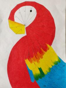 papiga spirala