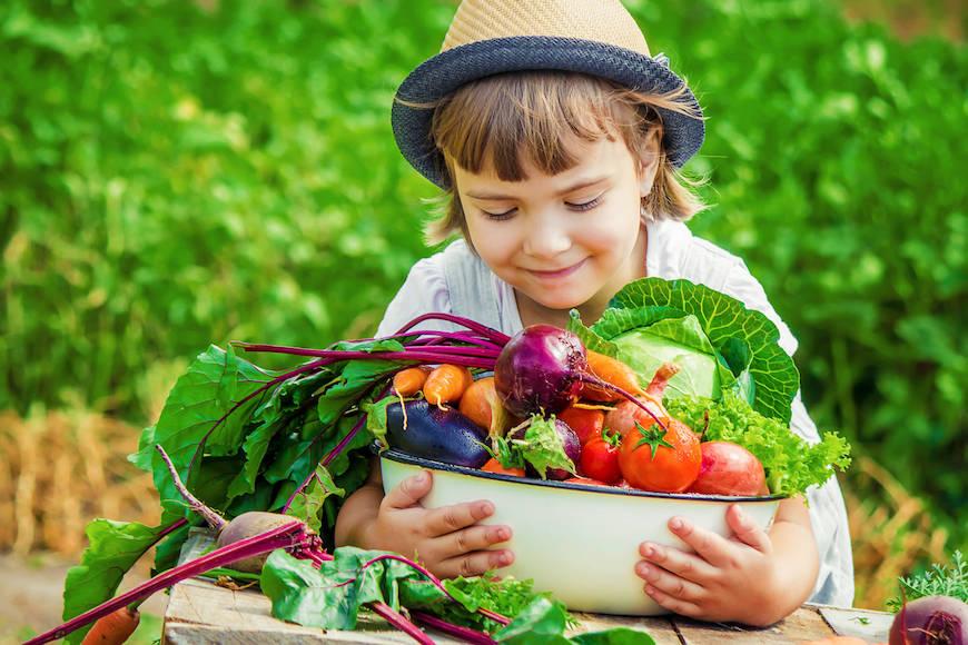 Hrvatske škole dobile 2000 sadnica za pripremu zdravih obroka